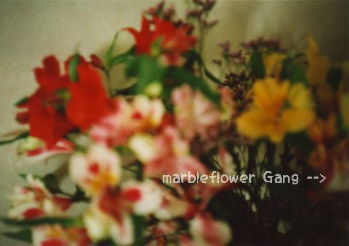 flower_080401.jpg