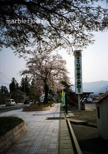 seibu002.jpg
